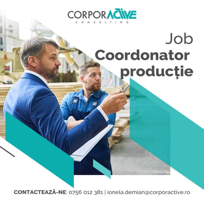Job Coordonator producție