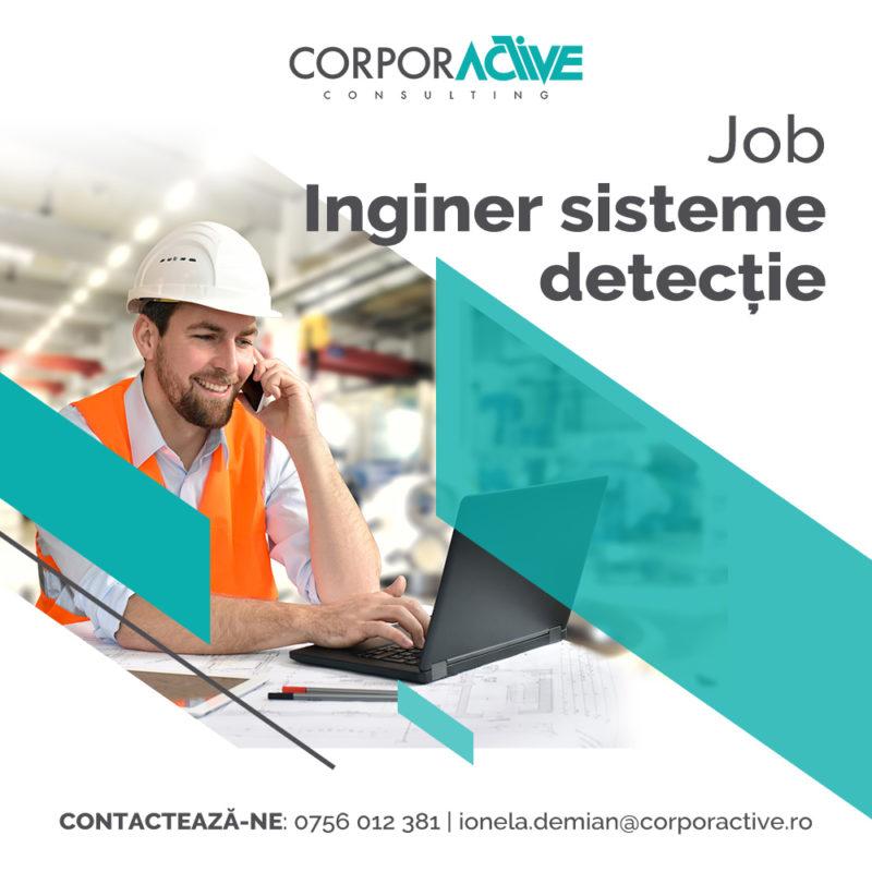 Inginer sisteme detecție